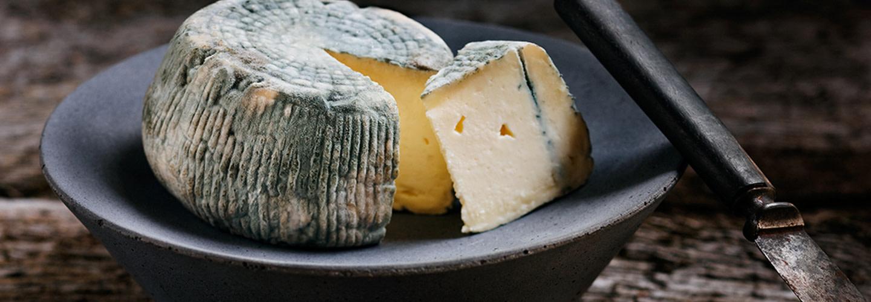 Blåmögelost görs på alla sorters mjölk