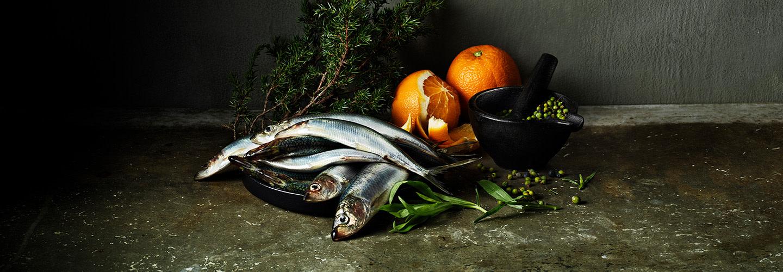 MSC – Gör ett bra drag. Välj den blå fisken – för alla världens hav