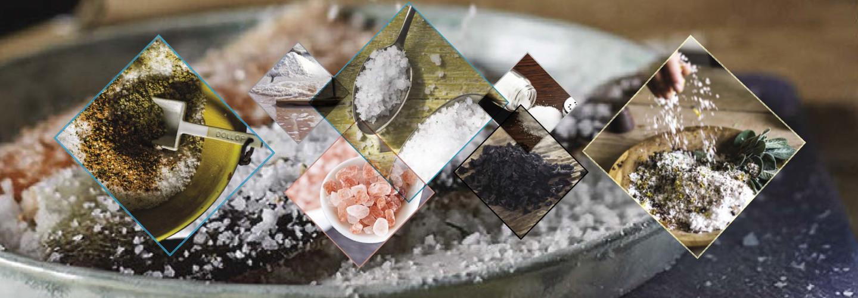 Saltskola
