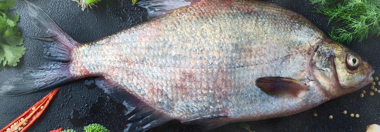 Braxenfärs - Hållbar svensk vildfisk som gör gott och smakar gott