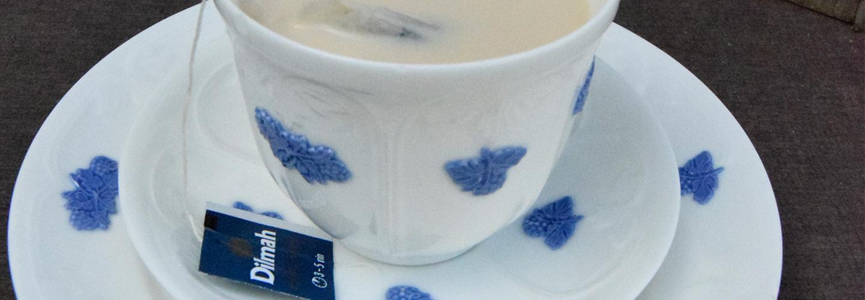 Så brygger du en god kopp te