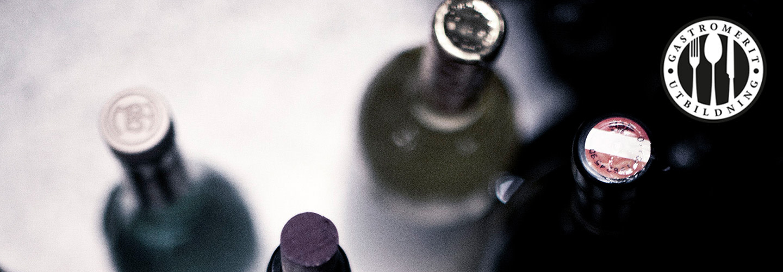 Vinkunskap – tvådagars intensivkurs
