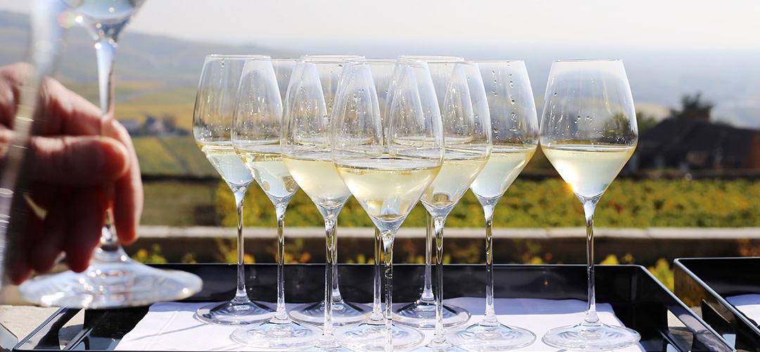 Vill du bli champagneexpert?