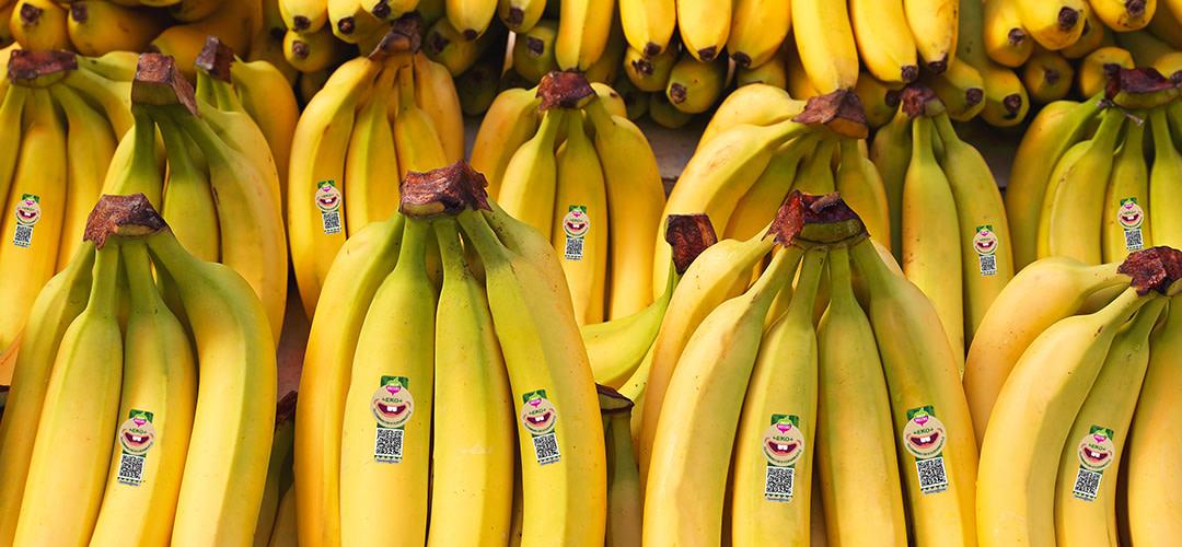Nu bidrar du till hjälporganisationen Operation Smile vid varje köp av en ekologisk banan