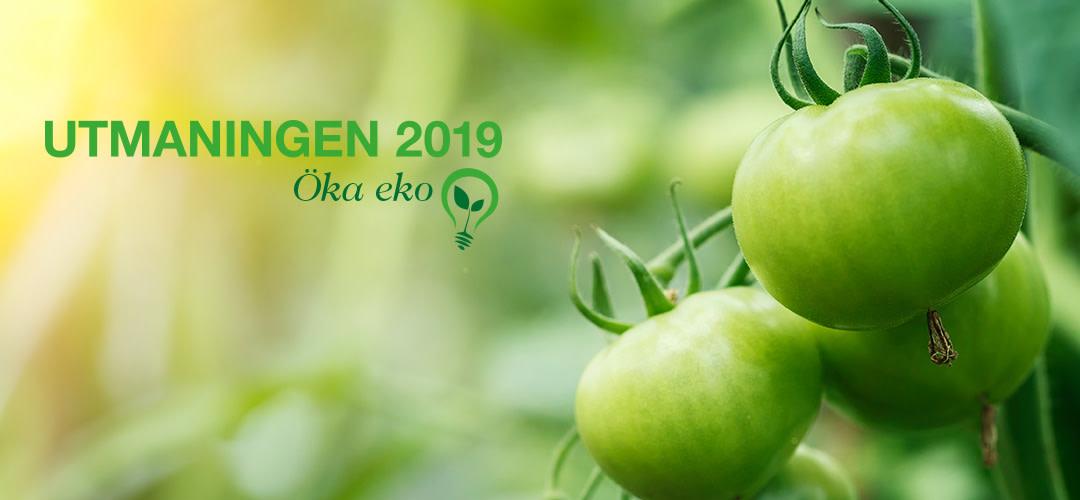 Utmaningen 2019: Öka eko