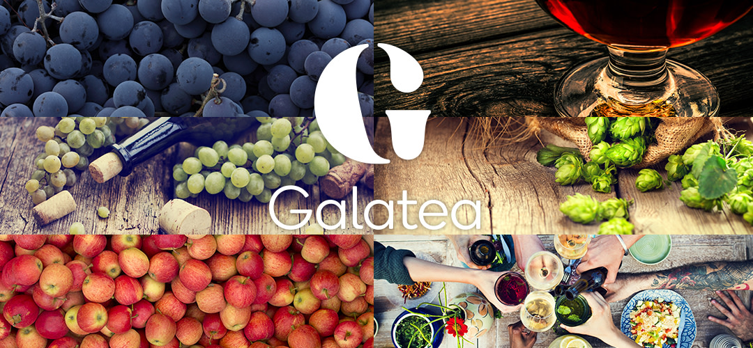 Welcome to Galatea's world of beverages!